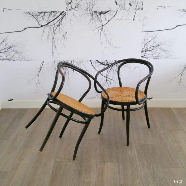 Set van 2 stoelen B9 / 209, Ligna, jaren '60